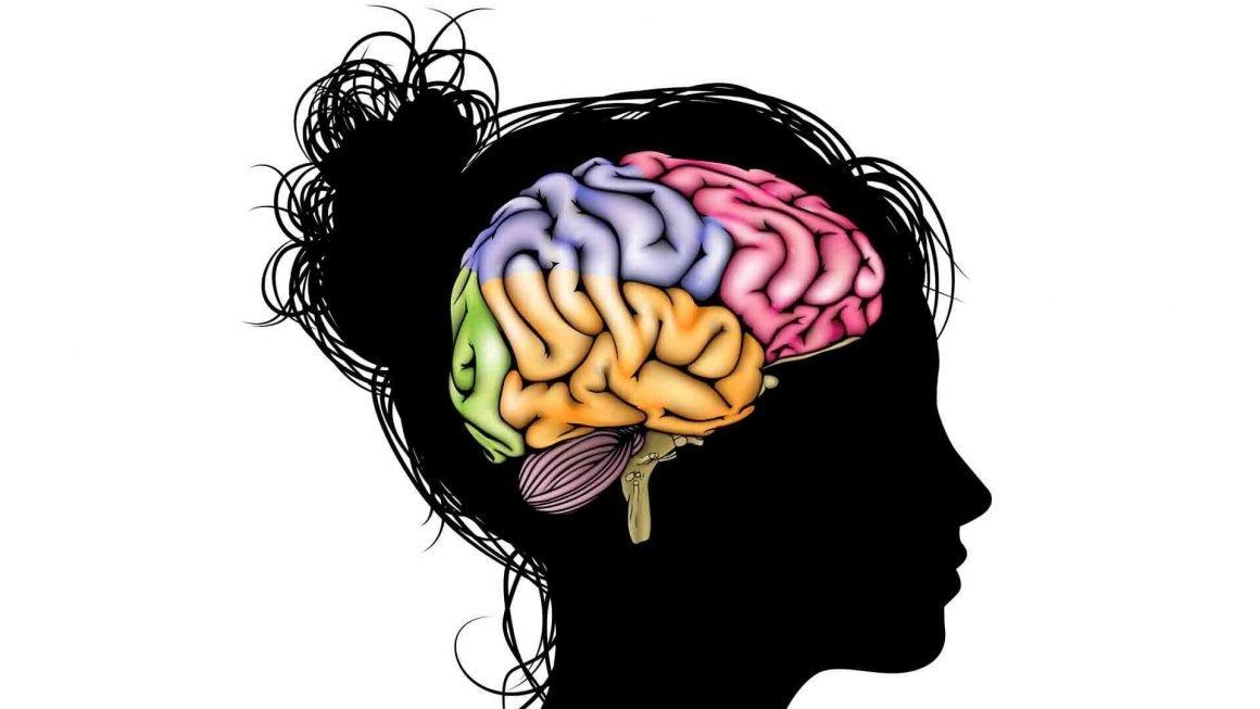beyin tumoru1