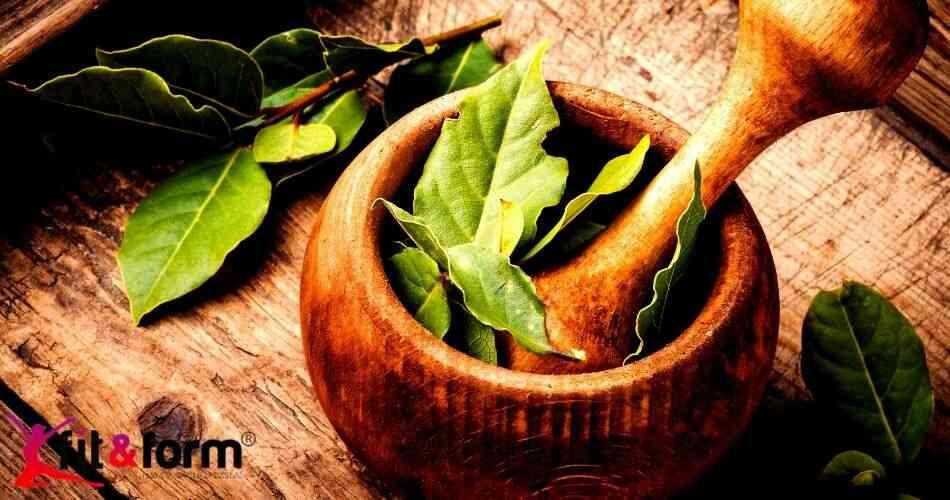 defne yaprağı faydaları