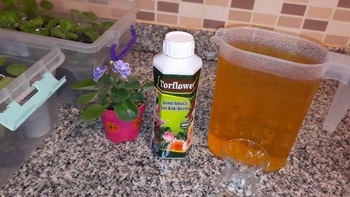 Mixflor Sivi Bitki Besini Nasil Kullanilir